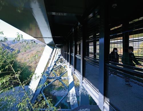 カーブの外側に当たる下流側の中間支柱は、傾いた状態で並ぶ(写真:安川 千秋)