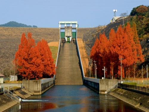調査対象となった寺内ダムの洪水吐き(写真:水資源機構)