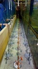 水理模型実験の様子(写真:京都大学防災研究所)