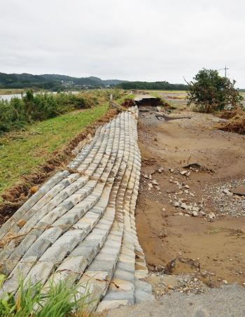 写真1■ 写真は茨城県常陸大宮市下伊勢畑で破堤した那珂川の堤防。川表側は連節ブロックなどで過去に堤防を補強していた(写真:日経クロステック)