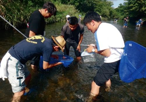 写真1■ 加藤建設が2019年9月に実施した1回目のインターンシップの様子。学生らが川の生き物を捕まえる(写真:加藤建設)