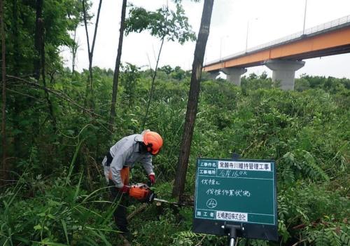 写真1■ 常願寺川の維持管理工事の様子。伐木は手作業だったが、測量や施工管理などにICTを導入した(写真・資料:松嶋建設)
