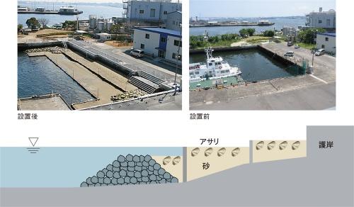 図4■ 「潮彩の渚」の生物共生型護岸は砂泥(干潟)タイプ