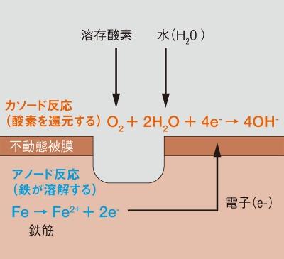 図1■ 鉄筋の腐食は2つの反応で起こる