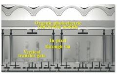 試作した3層分光型イメージセンサーの電子顕微鏡写真(出典:IEDMとソニーグループ)