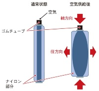 (a)空気圧式McKibben型人工筋肉の仕組み