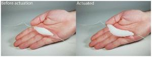 (c)Columbia Universityの研究者が開発した人工筋肉