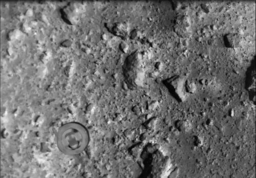 図3 中間赤外カメラで撮影したSCI