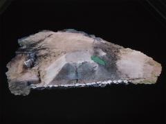 図1 「デジタル画像による全般検査の支援技術」の展示