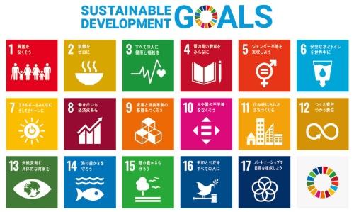 図1 SDGsの17の目標