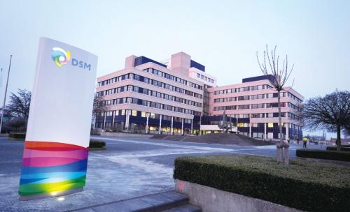 図2 DSMの本社