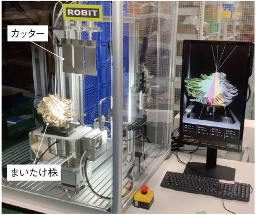 図1 ロビットが開発した自動カットロボット