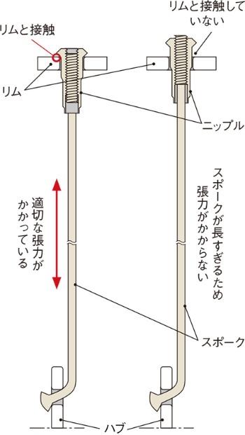 図2 スポークの長さが張力に与える影響