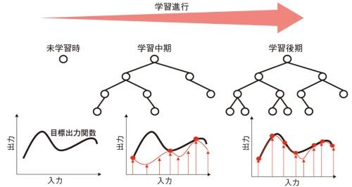 図2 DBTの学習イメージ