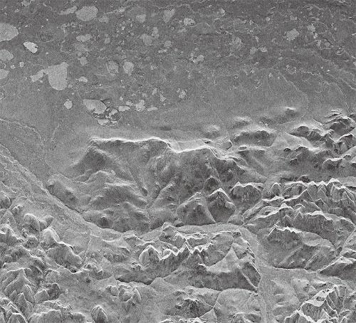図2 ICEYE X1のSARが撮像した画像の例