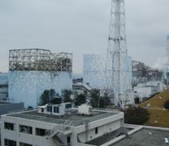 出所:東京電力ホールディングス
