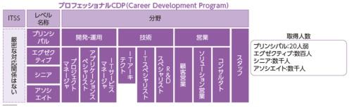 図2●NTT データのプロフェッショナルCDP(Career Development Program)