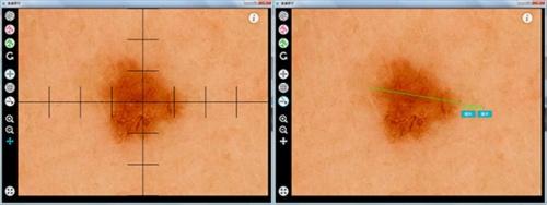 スケール表示(左)とメジャー表示(右)の画面イメージ(出所:カシオ計算機)