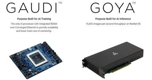 左はメザニンカードの「Gaudi HL-20X」。右はPCI Express Gen 4.0カード「Goya HL-1000」。