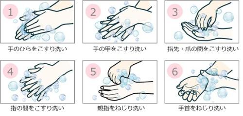 正しい手洗いの6ステップ