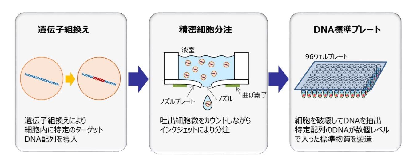 バイオプリンティング技術を応用して製造