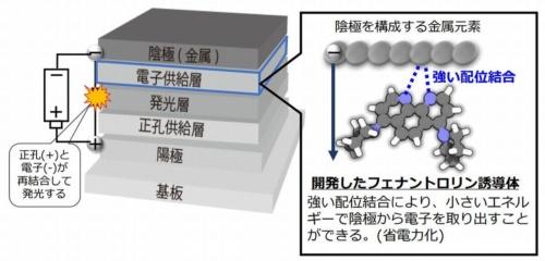 新たに開発したフェナントロリン誘導体の特徴
