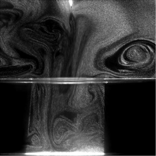 図3:PIV解析を応用して捉えた微小粒子の動き