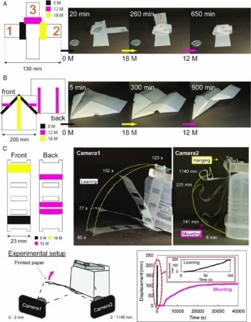 図:印刷によって指定した順序で紙が折りたたまれる例