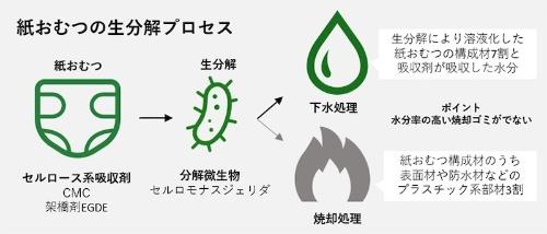 図1:紙おむつの生分解プロセス
