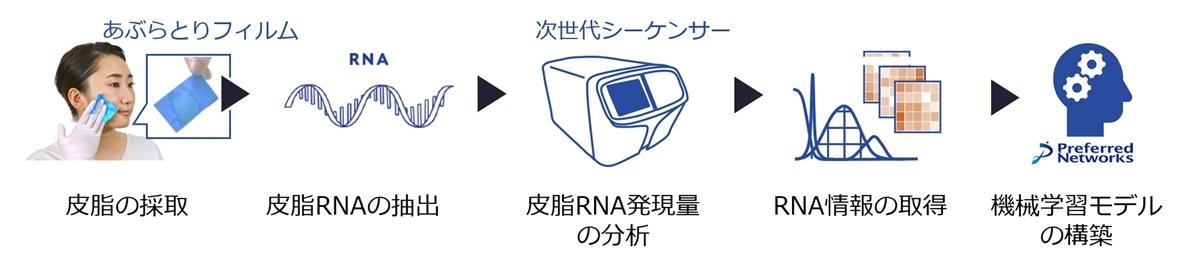 皮脂RNA情報の取得と機械学習モデル構築の流れ (出所:Preferred Networks)